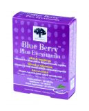 BLUEBERRY PLUS EYEVITAMIN tabletes, 60 gb.
